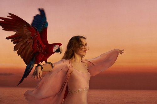 joanna newsom_leaving_city pic