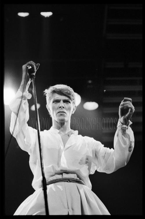 David-Bowie-vert Wartermark